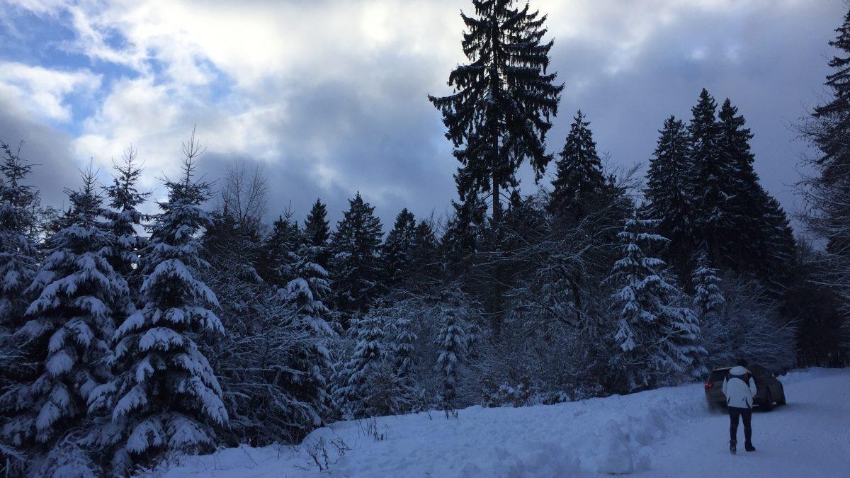 Tipps für kalte Tage: Drei schnell erreichbare Ausflugsziele