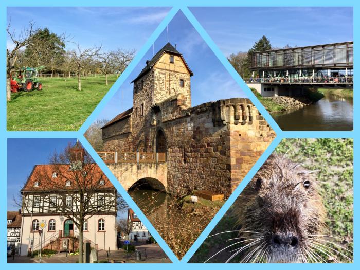 Von einer Flucht in die Stadt der Quellen: Ein Kurztrip nach Bad Vilbel