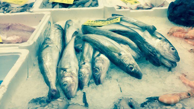 Wenn Fischers Fritz im Bahnhofsviertel frischen Fisch fischt…