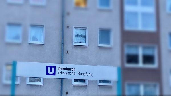"""Don't beat around the Dornbusch: Auf Stadtspaziergang mit dem """"OUI"""""""